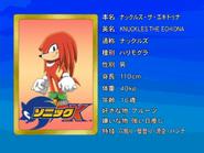 Sonic X karta 5