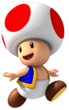 Toad MP8