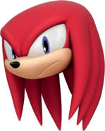 Knuckles Face