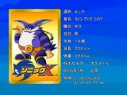 Sonic X karta 52