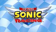 TSR Logo background 1