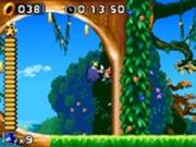 185px-LeafStorm