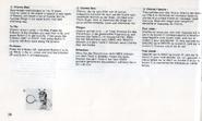 Chaotix manual euro (28)