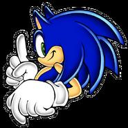 Sonic SA art 5