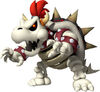 Dry Bowser MSOWG
