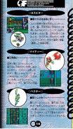 Chaotix manual japones (14)