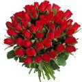 100-red-roses.jpg