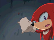 Tn 046knuckles