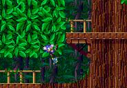Sonic vencido 5