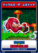 Sonic & Knuckles karta 13