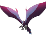 Raptor Hawk