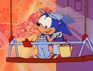 Window-washer-Sonic