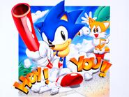 Sonic Screen Saver 15