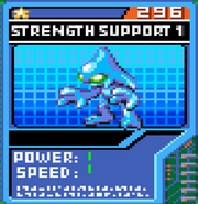 Strength Support 1