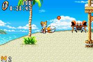 Sonic Advance Badnik gamigami