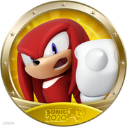 Icon 2020 knuckles
