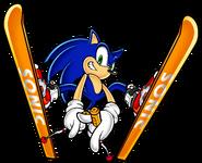 Sonic SA art 6