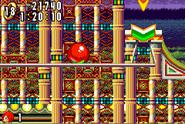 Casino Paradise V