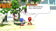 Knuckles After Challenge Classic