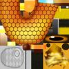 SFSB Texture HoneyCharmy