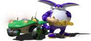 Team Sonic Racing Big