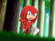 Knuckles022