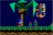 180px-Sonic in Sonic Chaos