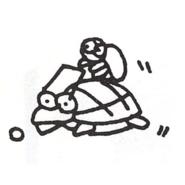 Turtloid Sketch