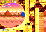 Multispinning loop sonic and knuckles