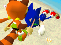 Sonic is found by Marine Sonic Rush Adventure
