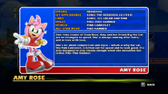 Sonic and Sega All Stars Racing bio 04