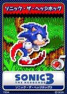 Sonic 3 karta 15