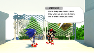 Sonic Generations Shadow Before Fight