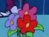 Mobisia Marvelosa Marigoldia