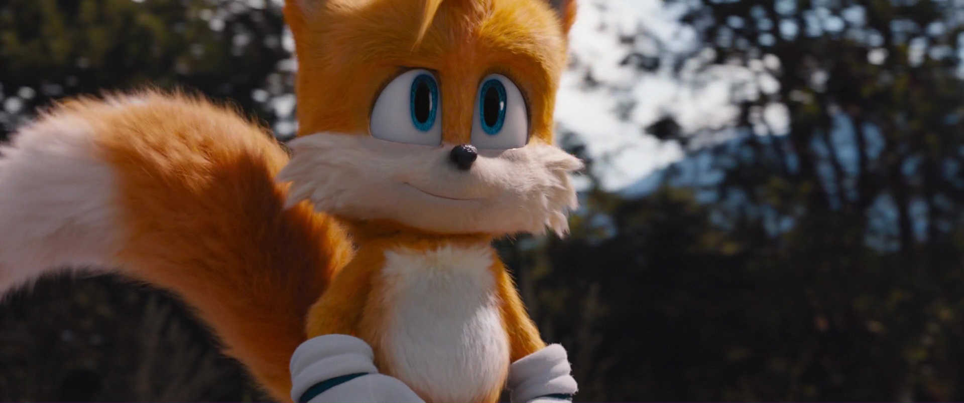 Image result for sonic movie tails