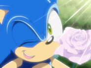 Sonic134