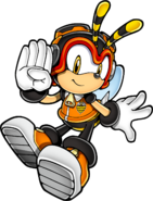 Sonic Art Assets DVD - Charmy