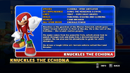 Sonic and Sega All Stars Racing bio 11
