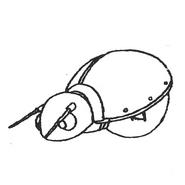 Flasher Sketch