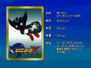 Sonic X karta 19