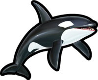 Sonic Runners Orca