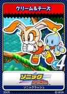Sonic Rush karta 12