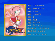 Sonic X karta 98