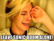 Leavesonicboomalone