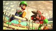 Luigi, Shadow & Yoshi