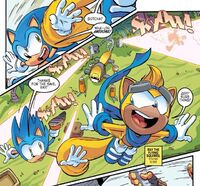 Ray saves Sonic