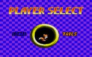 Sonic Chaos GG menu 2