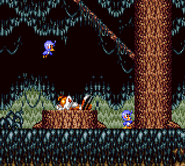 Tails Adventure opening 1