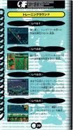 Chaotix manual japones (39)