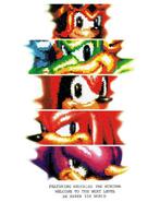 Knuckles-Chaotix-Box-Art-JP